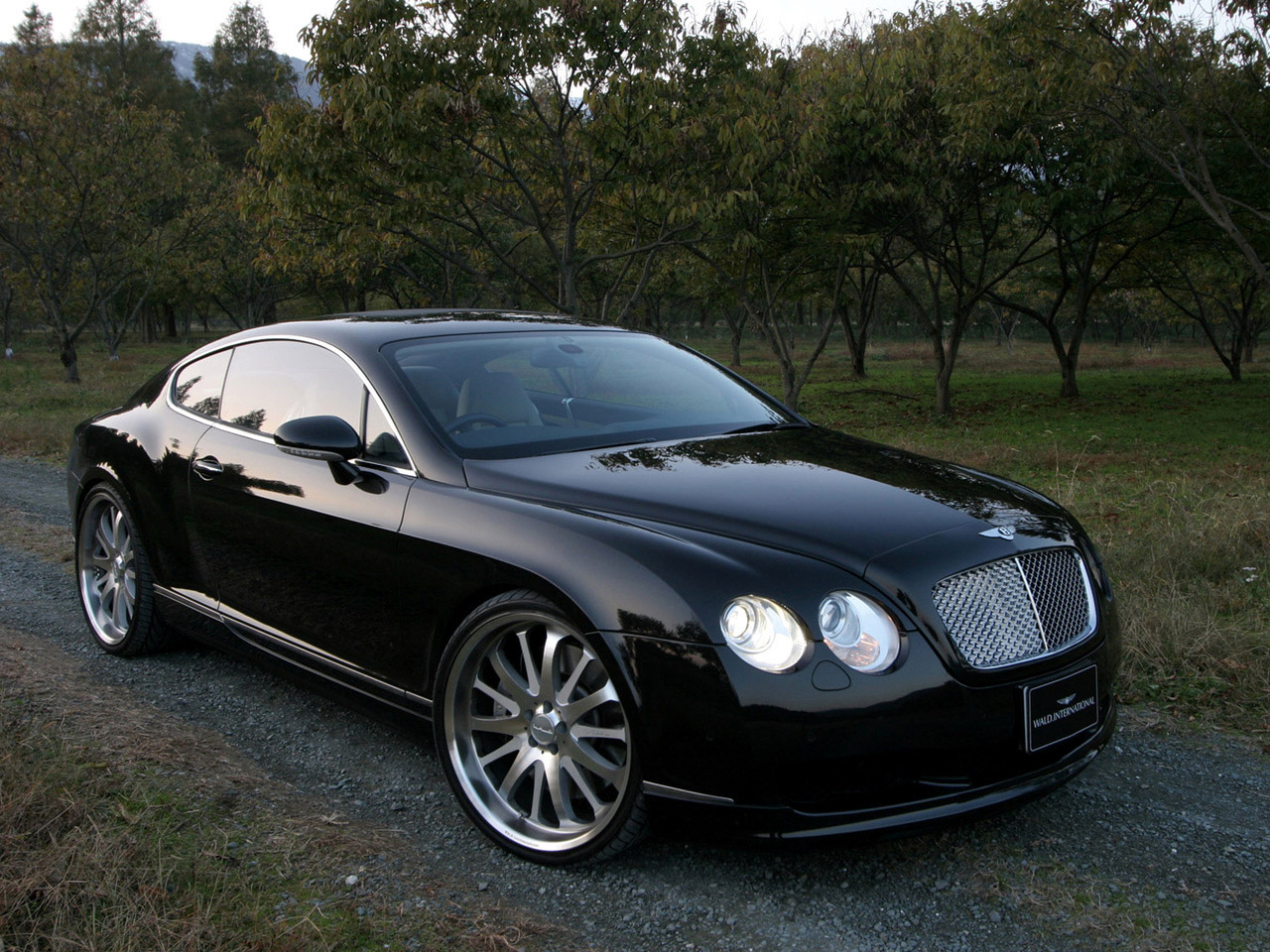 WALD Bentley Continental GT 2006 Backgrounds HD