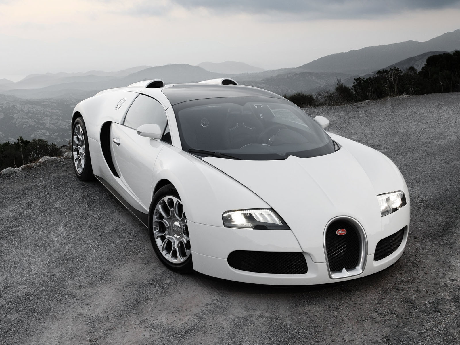 Bugatti Veyron Grand Sport White Wallpaper For Desktop