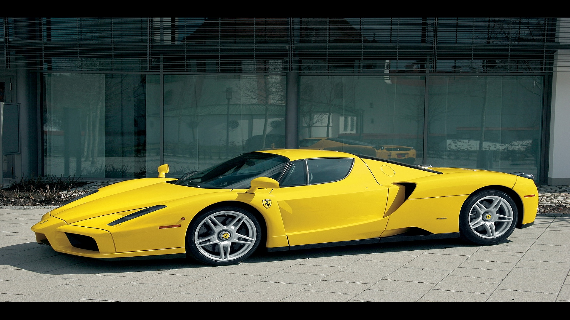 Ferrari Enzo  World Cars Wallpapers Background Free